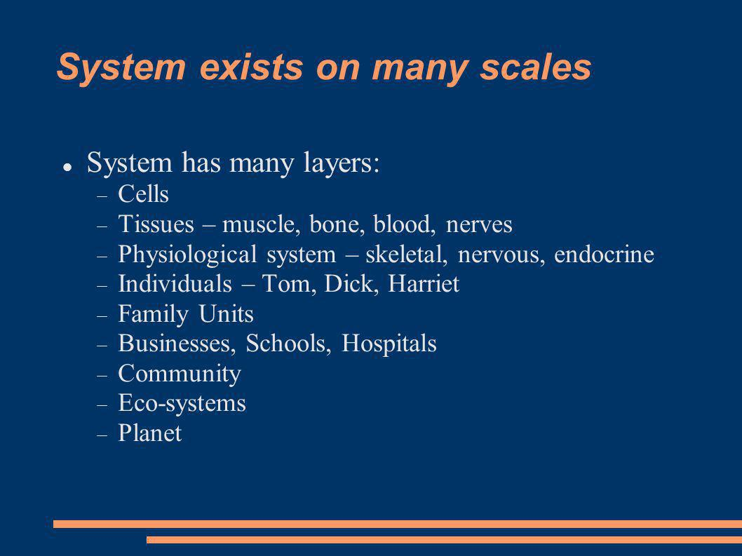 System exists on many scales System has many layers: Cells Tissues – muscle, bone, blood, nerves Physiological system – skeletal, nervous, endocrine Individuals – Tom, Dick, Harriet Family Units Businesses, Schools, Hospitals Community Eco-systems Planet