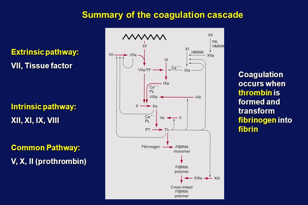 Summary of the coagulation cascade Extrinsic pathway: VII, Tissue factor Intrinsic pathway: XII, XI, IX, VIII Common Pathway: V, X, II (prothrombin) C