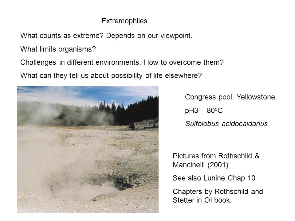 Extremophiles What counts as extreme. Depends on our viewpoint.