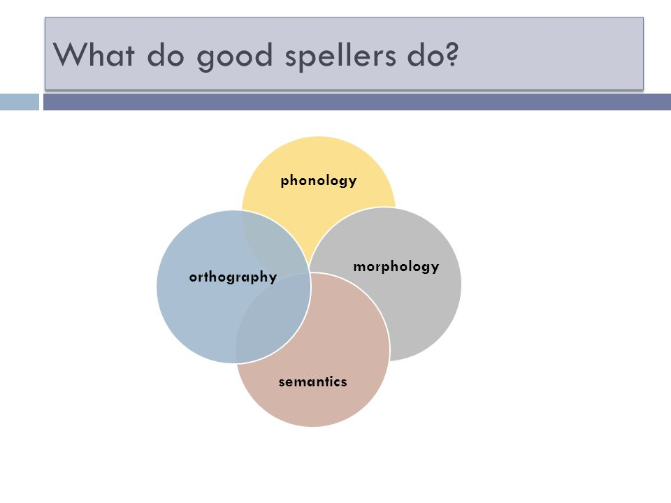 What do good spellers do phonology semantics morphology orthography