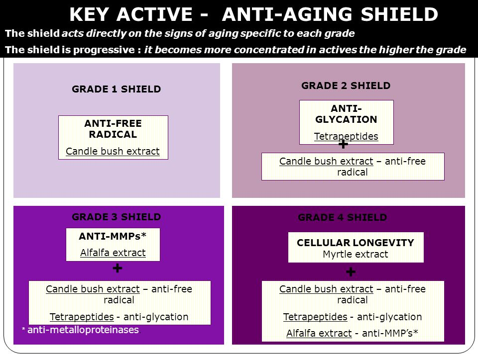 KEY ACTIVE - ANTI-AGING SHIELD GRADE 1 SHIELD The shield acts directly on the signs of aging specific to each grade The shield is progressive : it bec