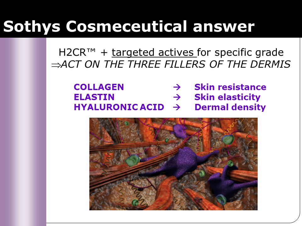 Sothys Cosmeceutical answer H2CR + targeted actives for specific grade ACT ON THE THREE FILLERS OF THE DERMIS COLLAGEN Skin resistance ELASTIN Skin el