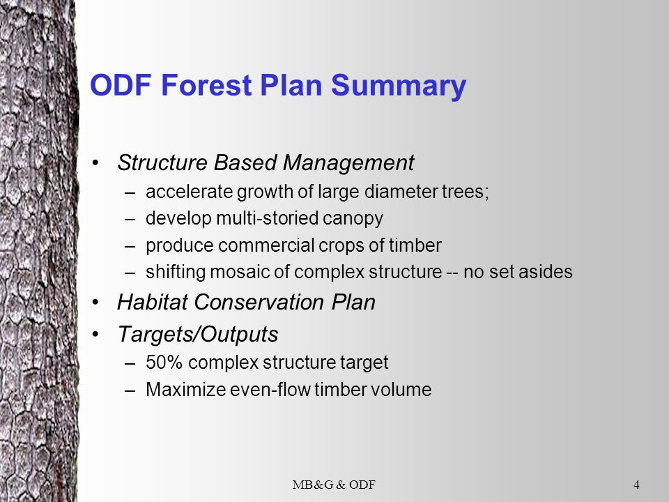 MB&G & ODF4 ODF Forest Plan Summary Structure Based Management –accelerate growth of large diameter trees; –develop multi-storied canopy –produce commercial crops of timber –shifting mosaic of complex structure -- no set asides Habitat Conservation Plan Targets/Outputs –50% complex structure target –Maximize even-flow timber volume