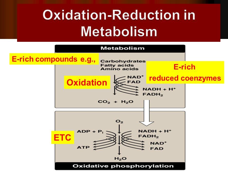 E-rich compounds e.g., Oxidation E-rich reduced coenzymes ETC