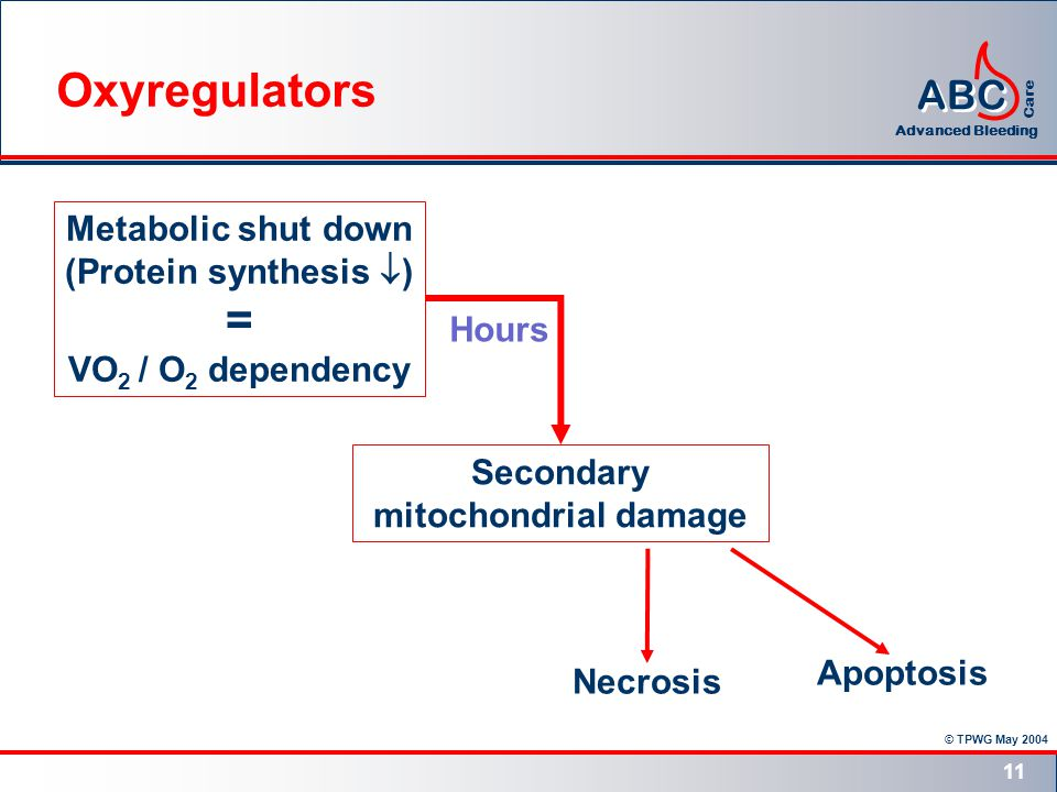 © TPWG May 2004 ABC Advanced Bleeding Care 11 Metabolic shut down (Protein synthesis ) = VO 2 / O 2 dependency Secondary mitochondrial damage Necrosis Apoptosis Hours Oxyregulators