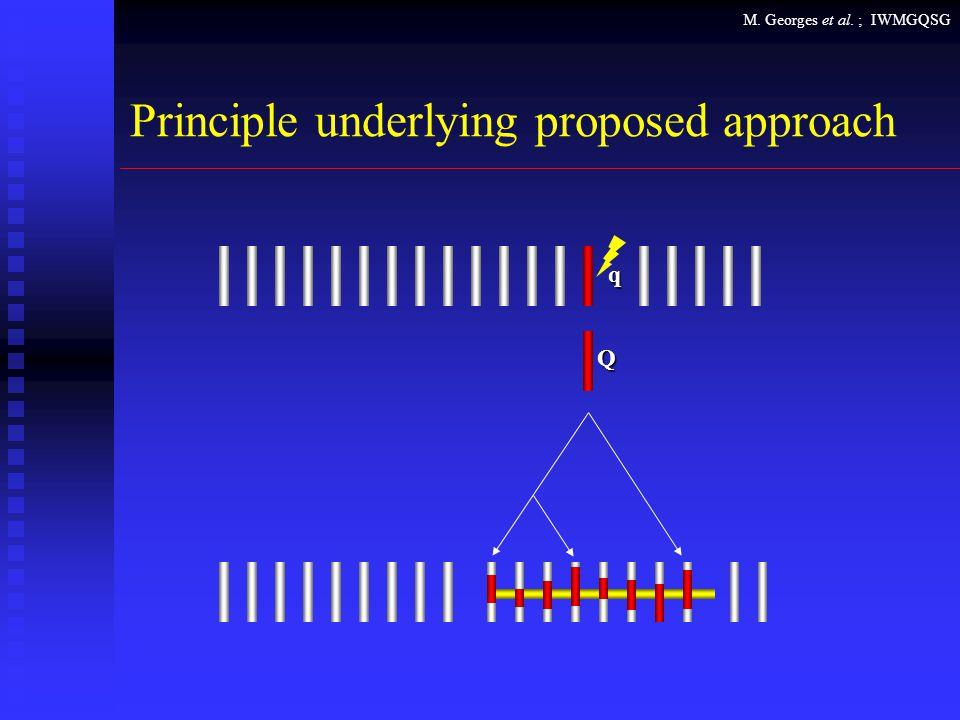 M. Georges et al. ; IWMGQSG Principle underlying proposed approach Q q