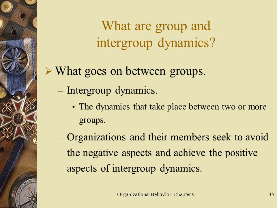 Organizational Behavior: Chapter 936 What are group and intergroup dynamics.