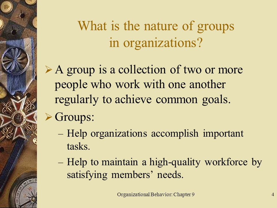 Organizational Behavior: Chapter 95 What is the nature of groups in organizations.