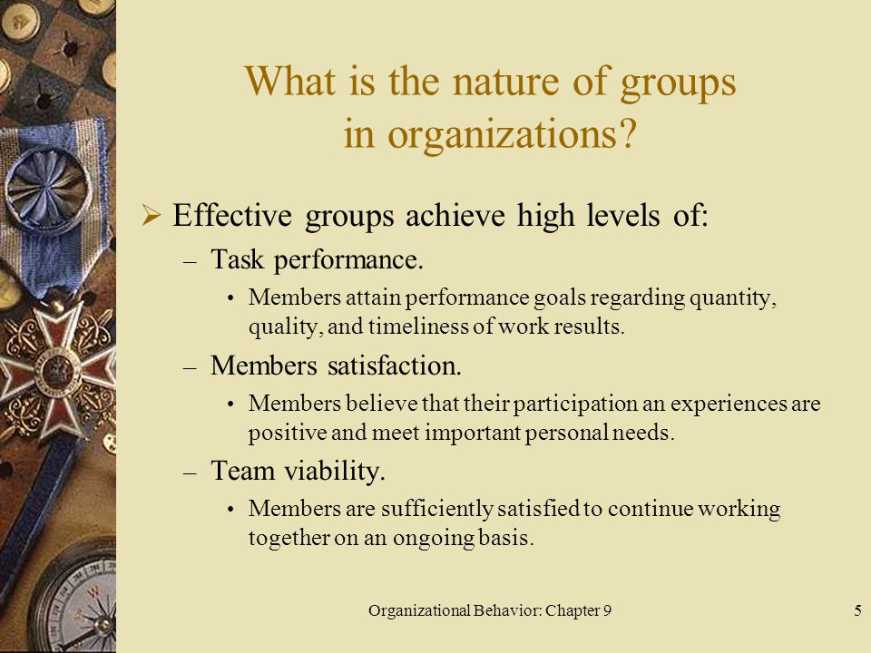 Organizational Behavior: Chapter 96 What is the nature of groups in organizations.