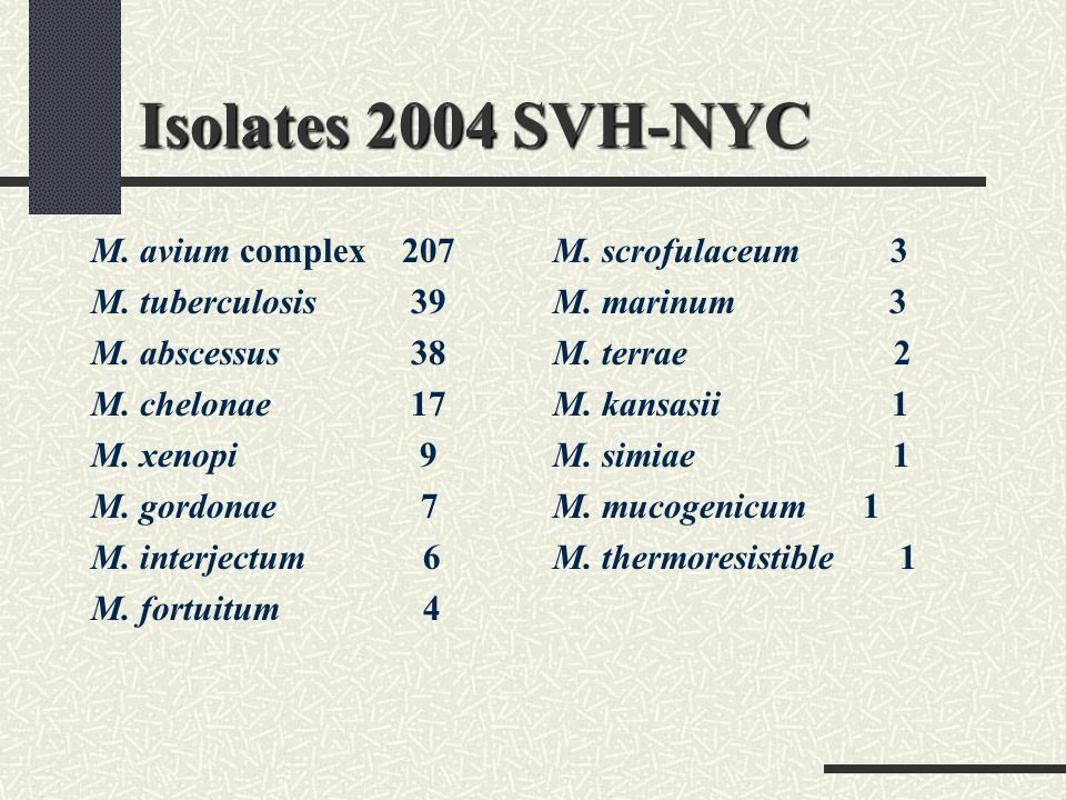 Isolates 2004 SVH-NYC M. avium complex 207 M. tuberculosis 39 M. abscessus 38 M. chelonae 17 M. xenopi 9 M. gordonae 7 M. interjectum 6 M. fortuitum 4