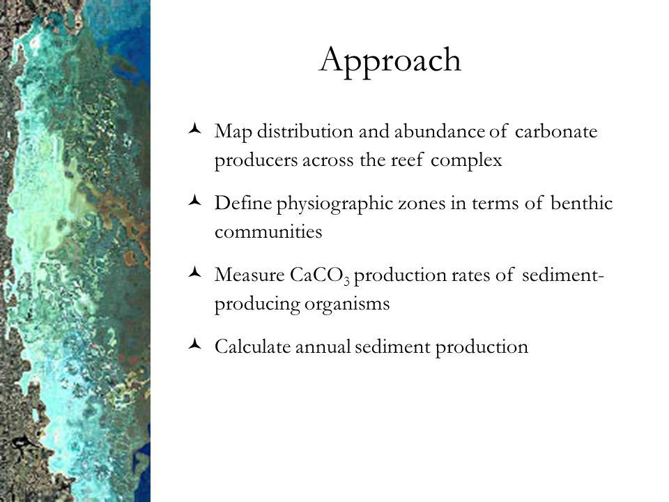 Approach Map distribution and abundance of carbonate producers across the reef complex Define physiographic zones in terms of benthic communities Measure CaCO 3 production rates of sediment- producing organisms Calculate annual sediment production