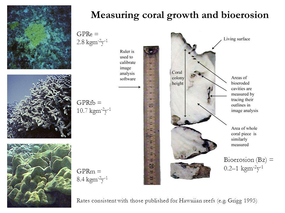 Measuring coral growth and bioerosion Rates consistent with those published for Hawaiian reefs (e.g.