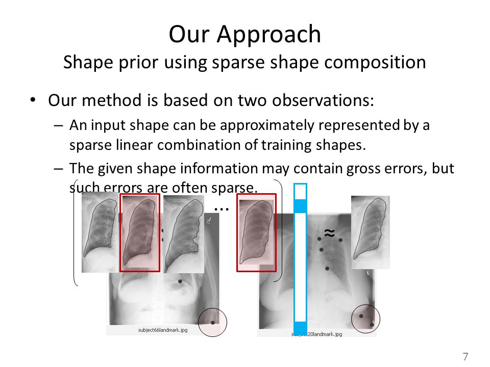 Our Approach Shape prior using sparse shape composition Our method is based on two observations: – An input shape can be approximately represented by a sparse linear combination of training shapes.