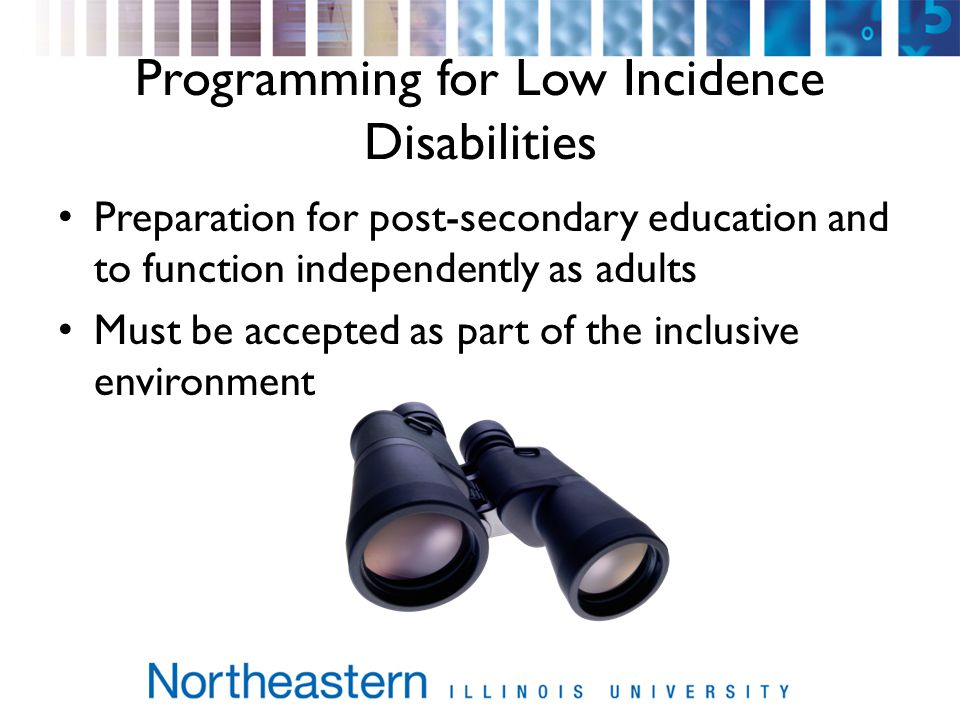 Programming for Low Incidence Disabilities Preparation for post-secondary education and to function independently as adults Must be accepted as part of the inclusive environment