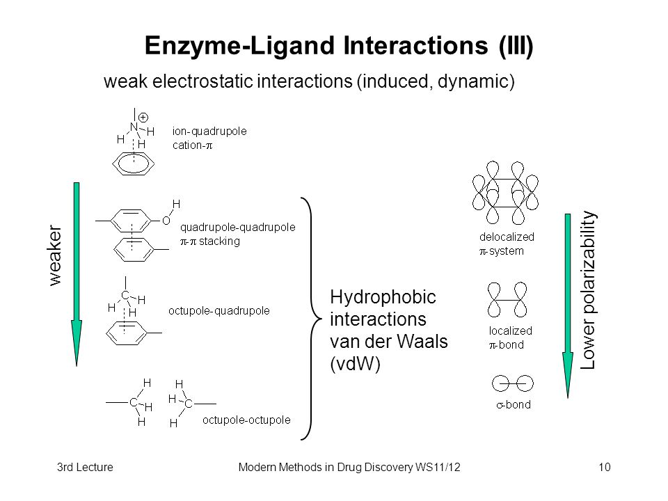 3rd LectureModern Methods in Drug Discovery WS11/1210 Enzyme-Ligand Interactions (III) weak electrostatic interactions (induced, dynamic) Hydrophobic