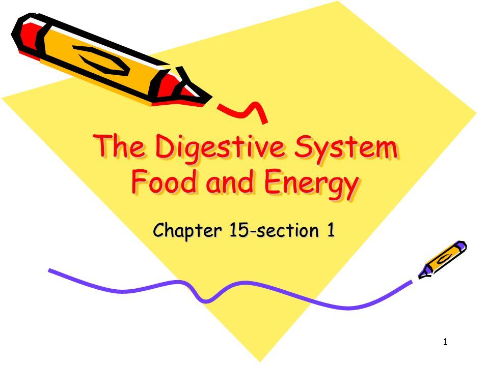 2 Key Concepts Why does your body need food.