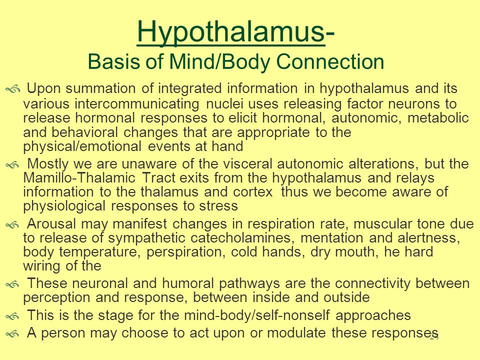 23 Hypothalamus- Basis of Mind/Body Connection The hard wiring of the Hypothalamus to other brain structures via neuronal projection pathways provides avenues for communicating conscious thought, emotions and memories to the hypothalamic integrator and governor Median Eminence (ME, Organum Vasculosum of the Lamina Terminalis (OVLT), Posterior Pituitary (Neurohypophysis) - Three components of the hypothalamus lie outside of the blood brain barrier and thus can sample blood-borne solutes such as glucose, electrolytes (especially sodium), fatty acids, amino acids, hormones, neurotransmitters, peptides, cytokines, etc.