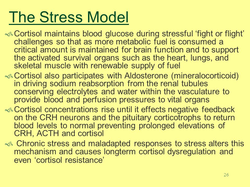 25 The Stress Model The HPTA is at the heart of the bodys ability to respond to the environment Cortisol elevation is the result of Corticotrophin Releasing Hormone (CRH) arising from the parvocellular neurons of the paraventricular nucleus (PVN) - this is the master stress hormone released in response to the perception of stress Stressful stimuli are generalized as: Physical – pain, trauma, infection, hypotension, exercise, hypoglycemia Psychological – bereavement, fear, personal loss, anger (the perception that God is not in control – something is wrong) CRH is released into the portal circulation of the Median Eminence and is carried by venous blood to the corticotroph cells of the anterior pituitary where it binds to the cell surface receptors stimulating the release of Adrenocorticotropic Hormone (ACTH) ACTH reaches the adrenal cortex stimulating the synthesis of Cortisol (glucocorticoid) and also androgenic hormones like androstenidione and DHEA (both may convert to testosterone and DHT in peripheral tissues )