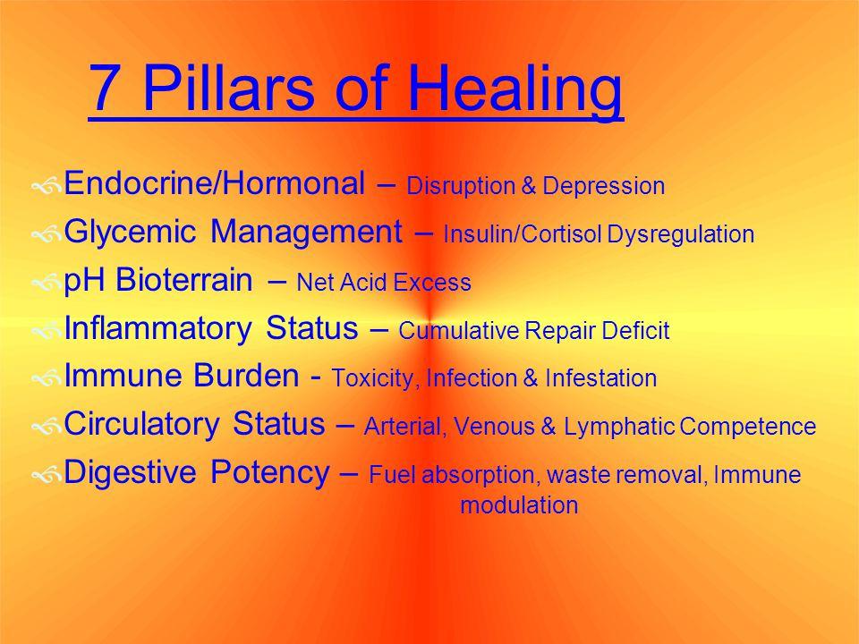 7 7 Pillars of Healing 7 Unified Mechanisms of Health Endocrine/Hormonal Glycemic Management pH Bioterrain Inflammatory status Immune burdens Circulatory Status Digestive Potency