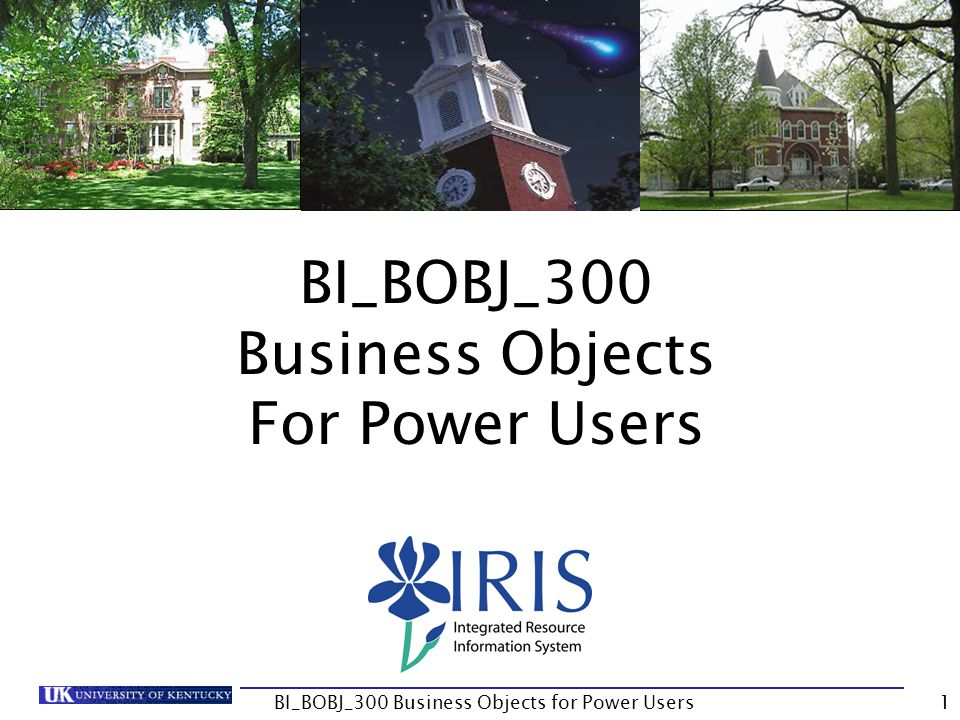 32 Report Manager Simple to configure how the tabs display Use the Configure Views icon BI_BOBJ_300 Business Objects for Power Users