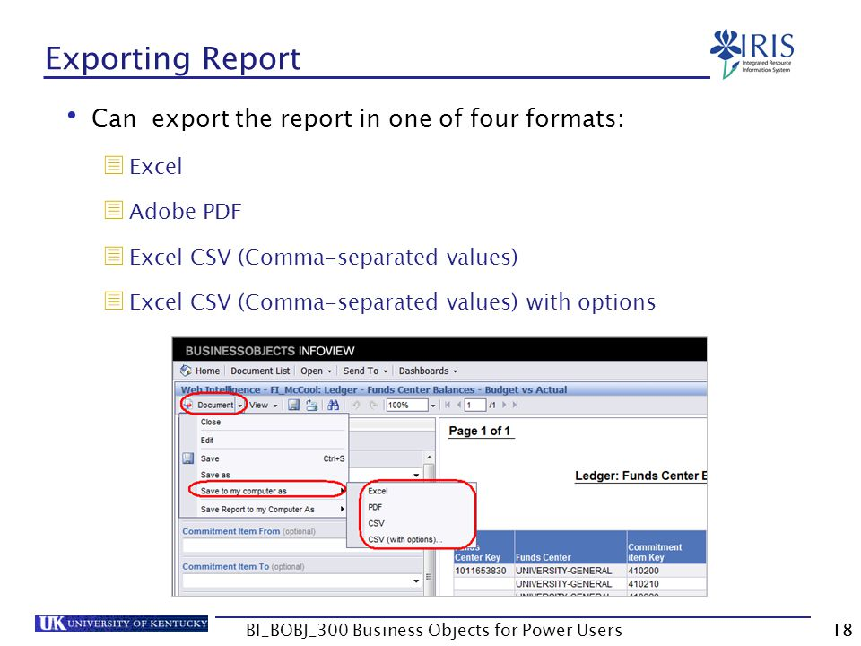 18 Exporting Report Can export the report in one of four formats: Excel Adobe PDF Excel CSV (Comma-separated values) Excel CSV (Comma-separated values