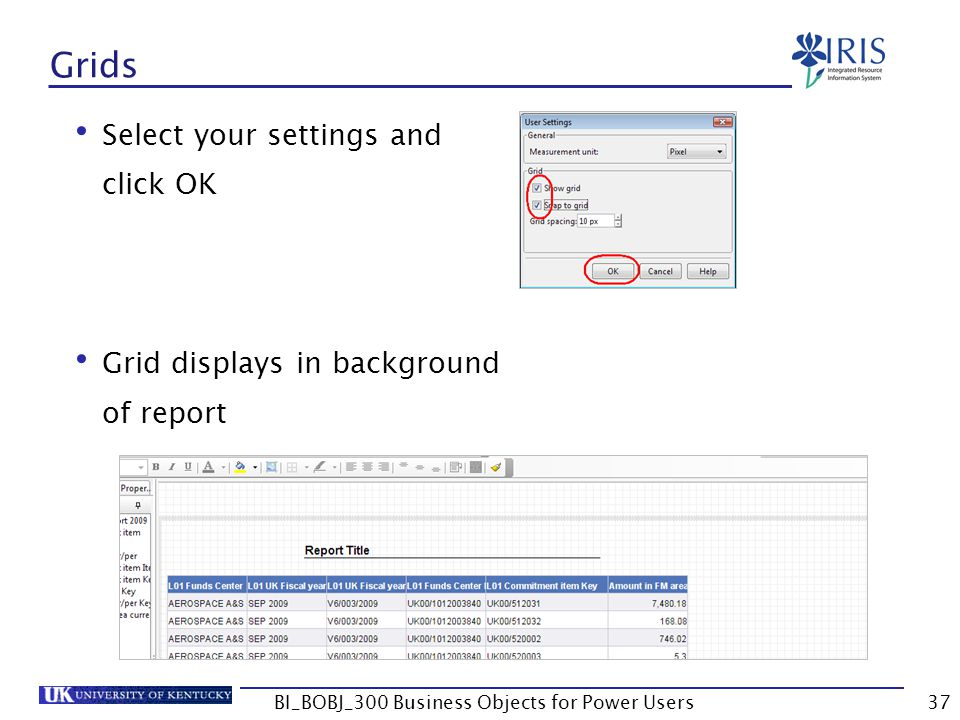 37 Grids Select your settings and click OK Grid displays in background of report BI_BOBJ_300 Business Objects for Power Users