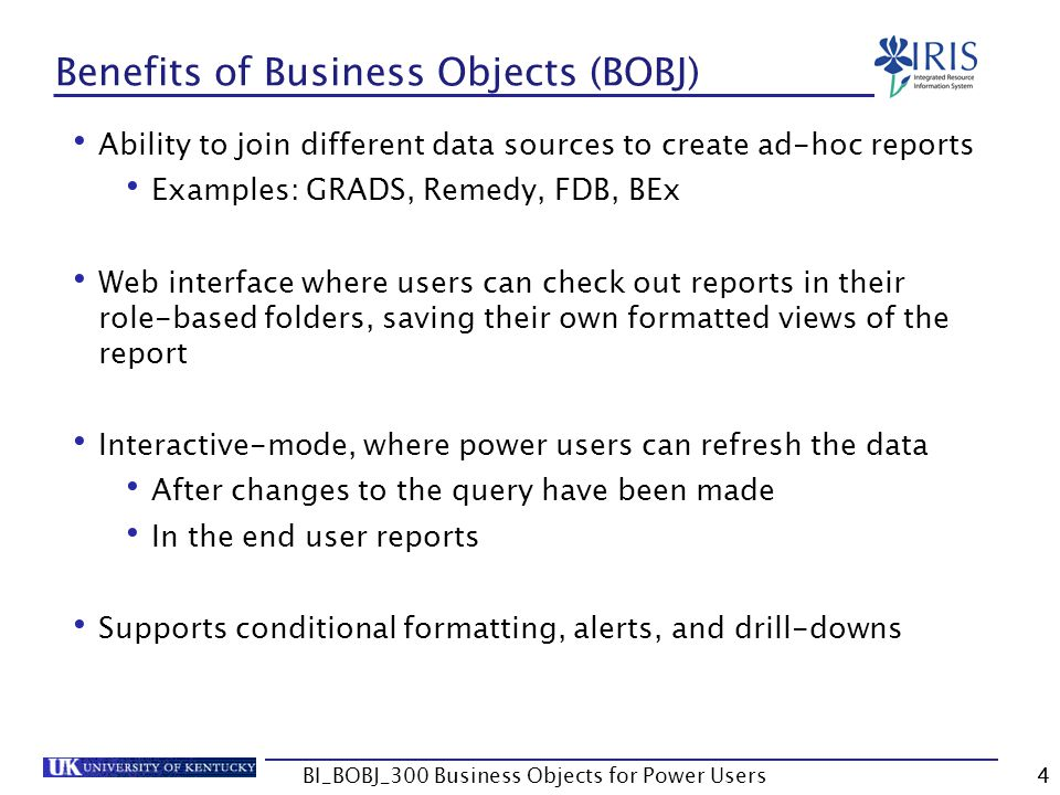 105 Summary Query Filters Value Lists Using Prompts Complex Filters BI_BOBJ_300 Business Objects for Power Users