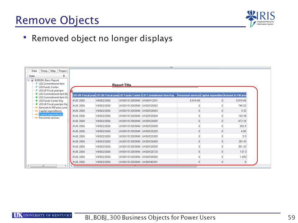 59 Remove Objects Removed object no longer displays BI_BOBJ_300 Business Objects for Power Users