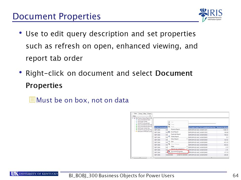 64 Document Properties Use to edit query description and set properties such as refresh on open, enhanced viewing, and report tab order Right-click on