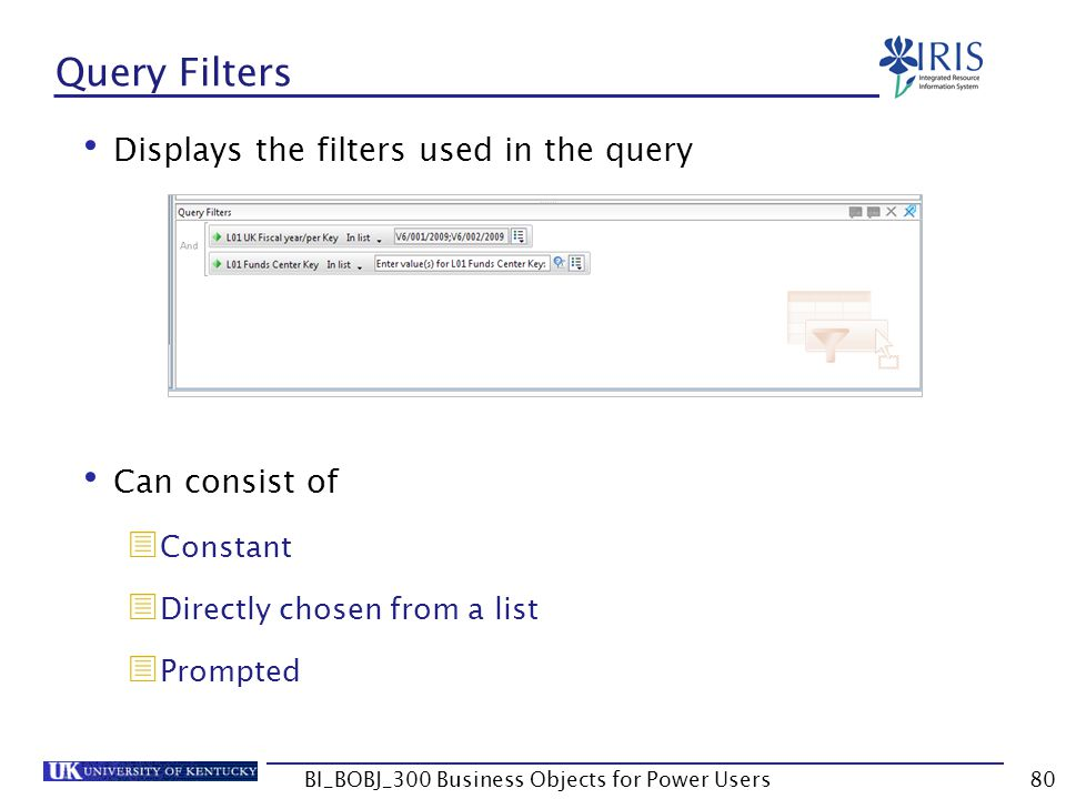 80 Query Filters Displays the filters used in the query Can consist of Constant Directly chosen from a list Prompted BI_BOBJ_300 Business Objects for