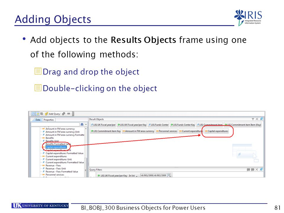 81 Adding Objects Add objects to the Results Objects frame using one of the following methods: Drag and drop the object Double-clicking on the object