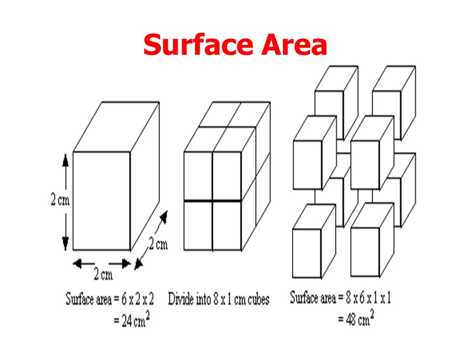 Collision Theory Collision theory explains the effect surface area on reaction rates. Collisions can only take place on the surface. The larger the su