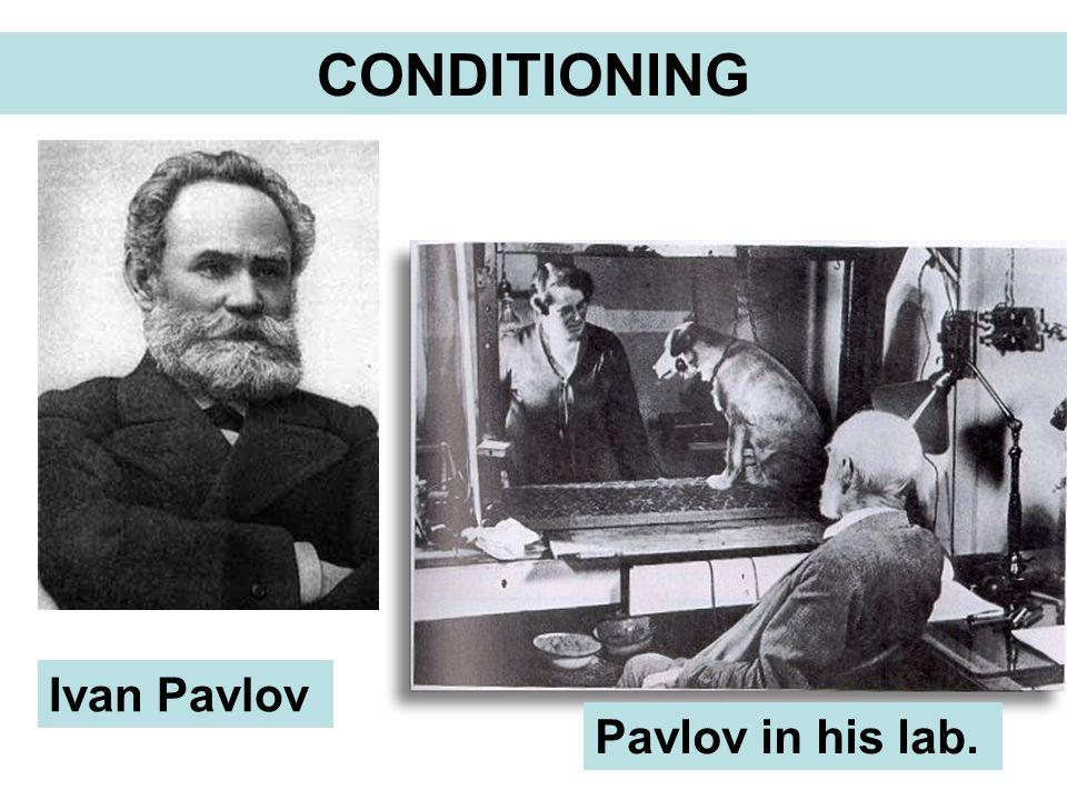 Ivan Pavlov Pavlov in his lab.
