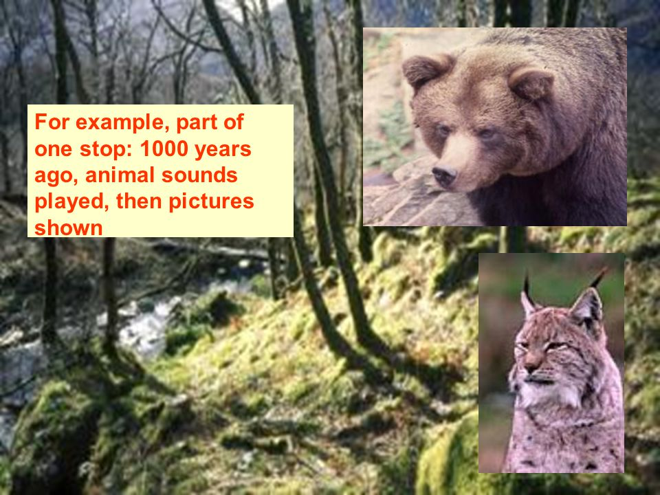 For example, part of one stop: 1000 years ago, animal sounds played, then pictures shown