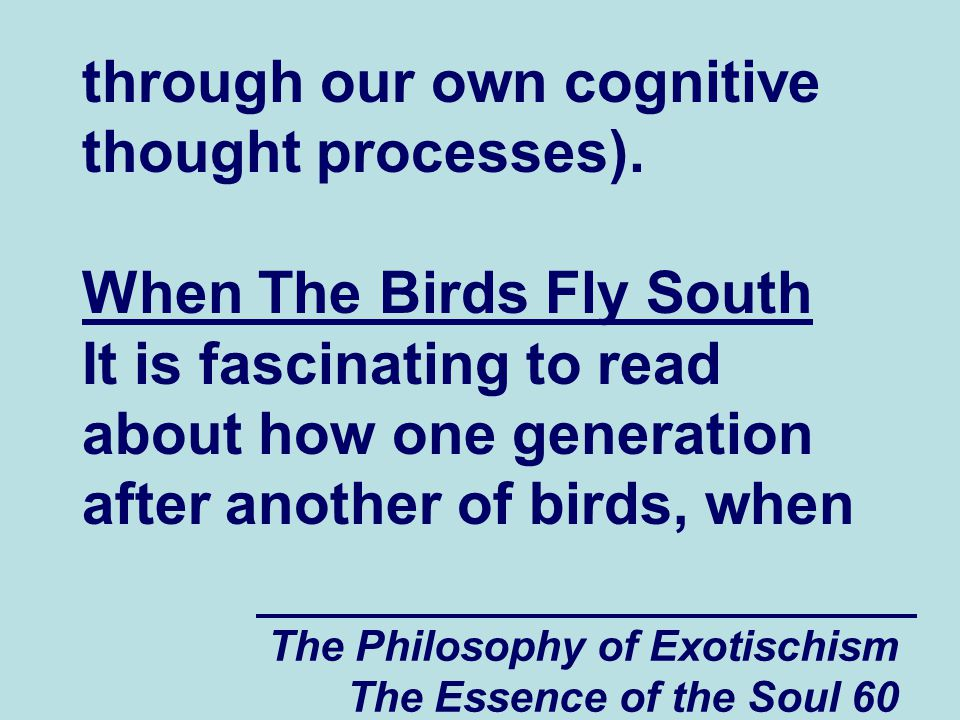 The Philosophy of Exotischism The Essence of the Soul 71 been embedded deep into their hearts and souls from previous generations is probably also a lot of true and ultimate knowledge.