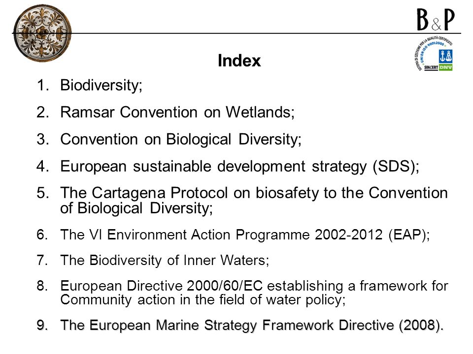 -to formulate and to implement their planning so as to promote the conservation of wetlands; -to be informed about any changes of the wetlands in their territory as a result of technological developments, pollution or other human interference; -to establish nature reserves on wetlands and to provide them for their wardening; -to promote the training of personnel competent in the fields of wetland research, management and wardening.