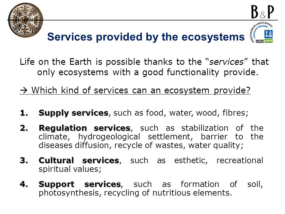 What are the damages that the loss of species, subspecies or variety cause.