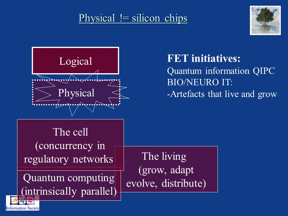 12 Physical != silicon chips Logical Physical The living (grow, adapt evolve, distribute) Quantum computing (intrinsically parallel) The cell (concurrency in regulatory networks FET initiatives: Quantum information QIPC BIO/NEURO IT: -Artefacts that live and grow