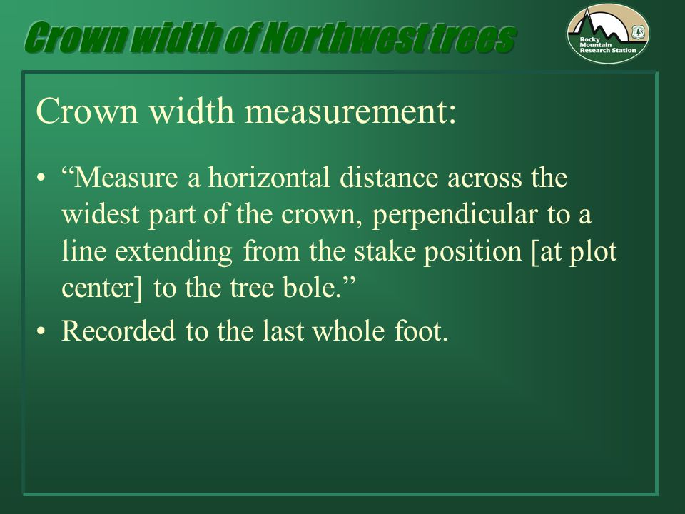 Crown width measurement: Measure a horizontal distance across the widest part of the crown, perpendicular to a line extending from the stake position [at plot center] to the tree bole.