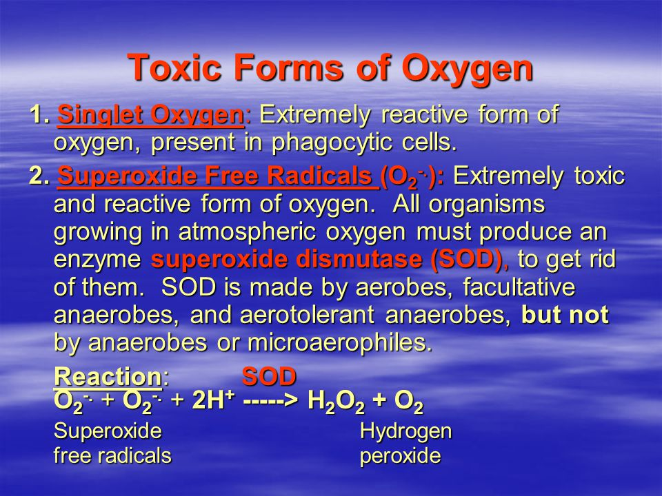 Toxic Forms of Oxygen 1.