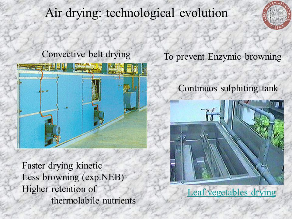 Air drying: technological evolution Convective belt drying Continuos sulphiting tank Leaf vegetables drying Faster drying kinetic Less browning (exp.N