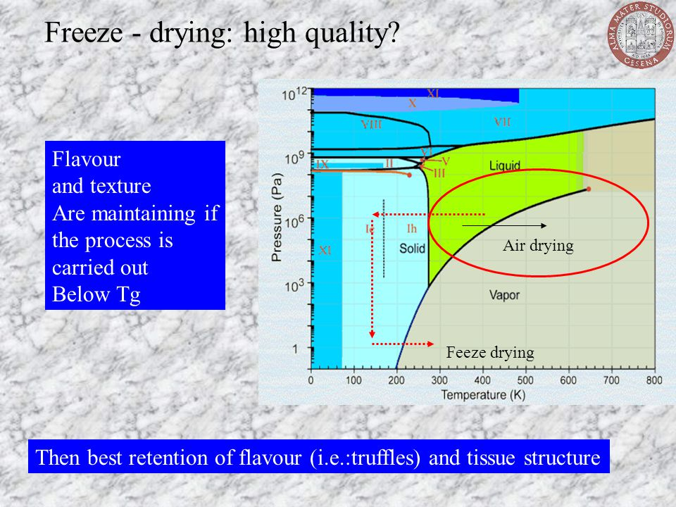 Freeze - drying: high quality? Air drying Feeze drying Flavour and texture Are maintaining if the process is carried out Below Tg Then best retention