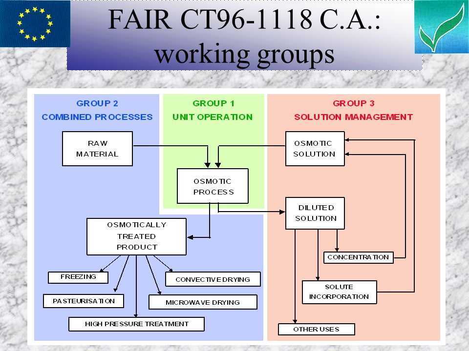 FAIR CT96-1118 C.A.: working groups