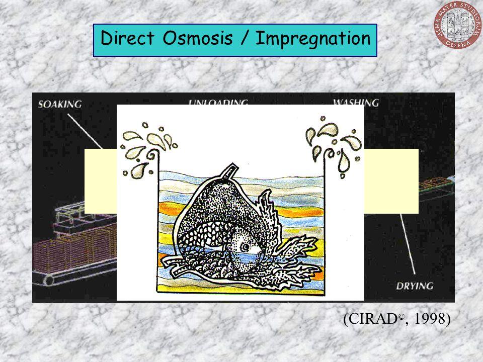 Direct Osmosis / Impregnation (CIRAD ©, 1998) TECHNOLOGY of the PROCESS