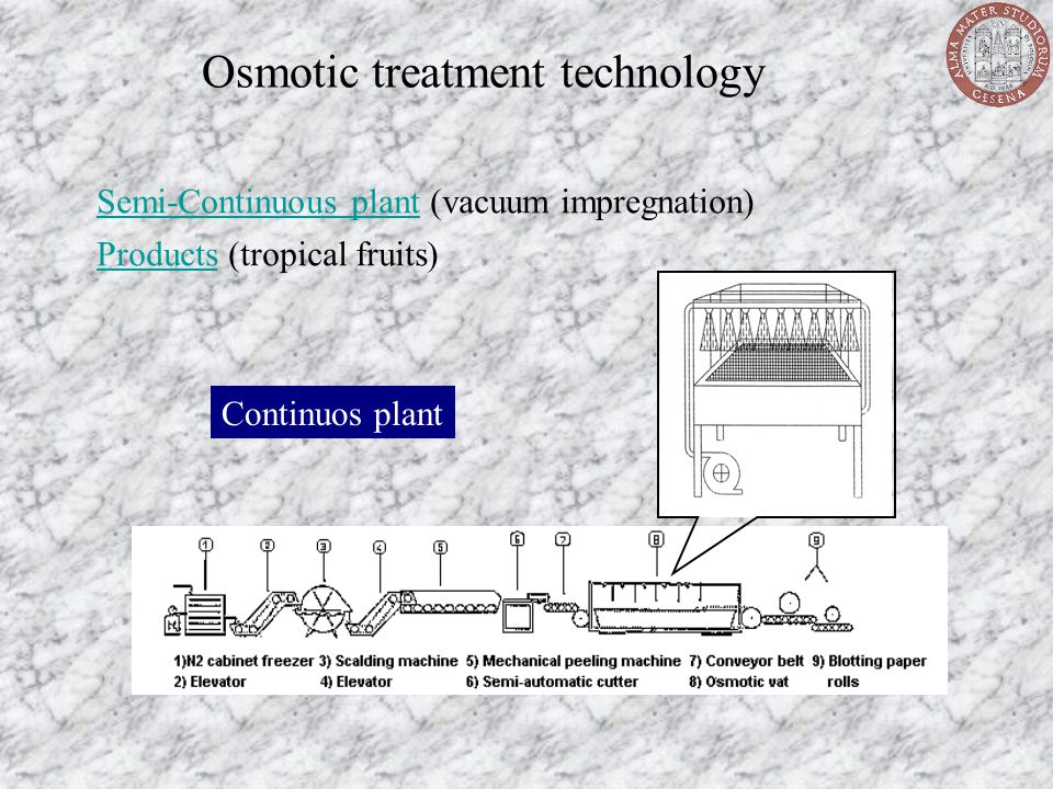 Osmotic treatment technology Semi-Continuous plantSemi-Continuous plant (vacuum impregnation) Continuos plant ProductsProducts (tropical fruits)