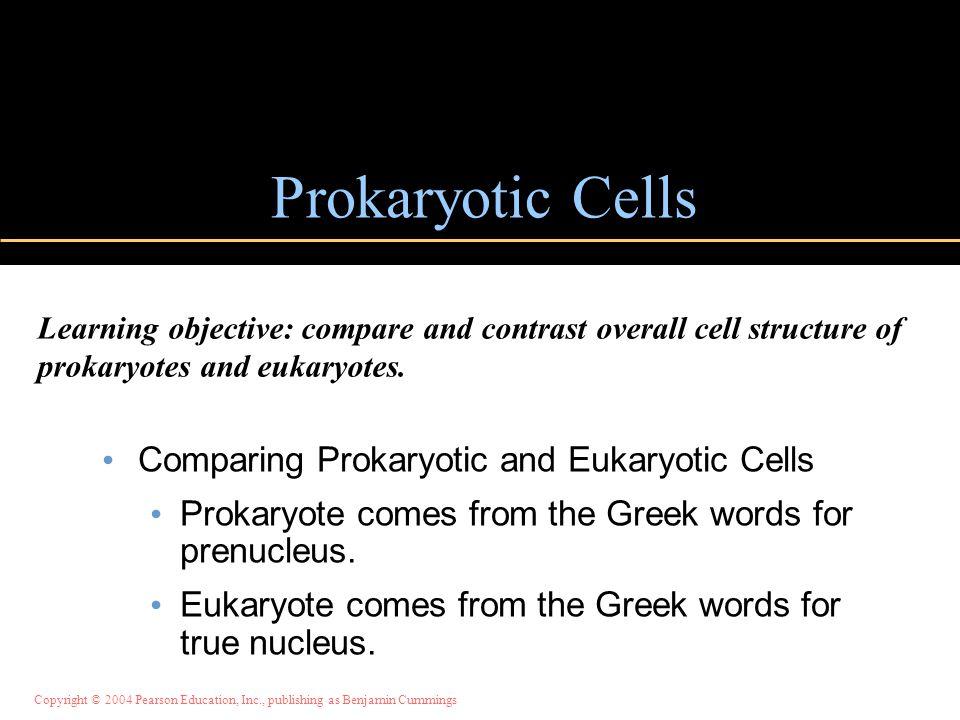 Copyright © 2004 Pearson Education, Inc., publishing as Benjamin Cummings Prokaryotic Cells Comparing Prokaryotic and Eukaryotic Cells Prokaryote come