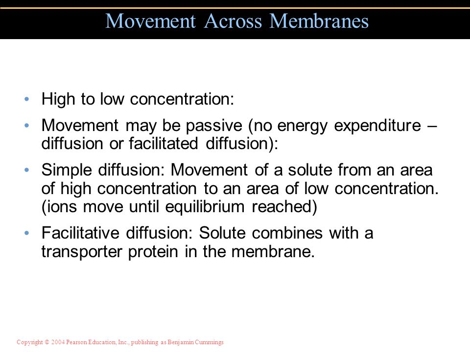 High to low concentration: Movement may be passive (no energy expenditure – diffusion or facilitated diffusion): Simple diffusion: Movement of a solut