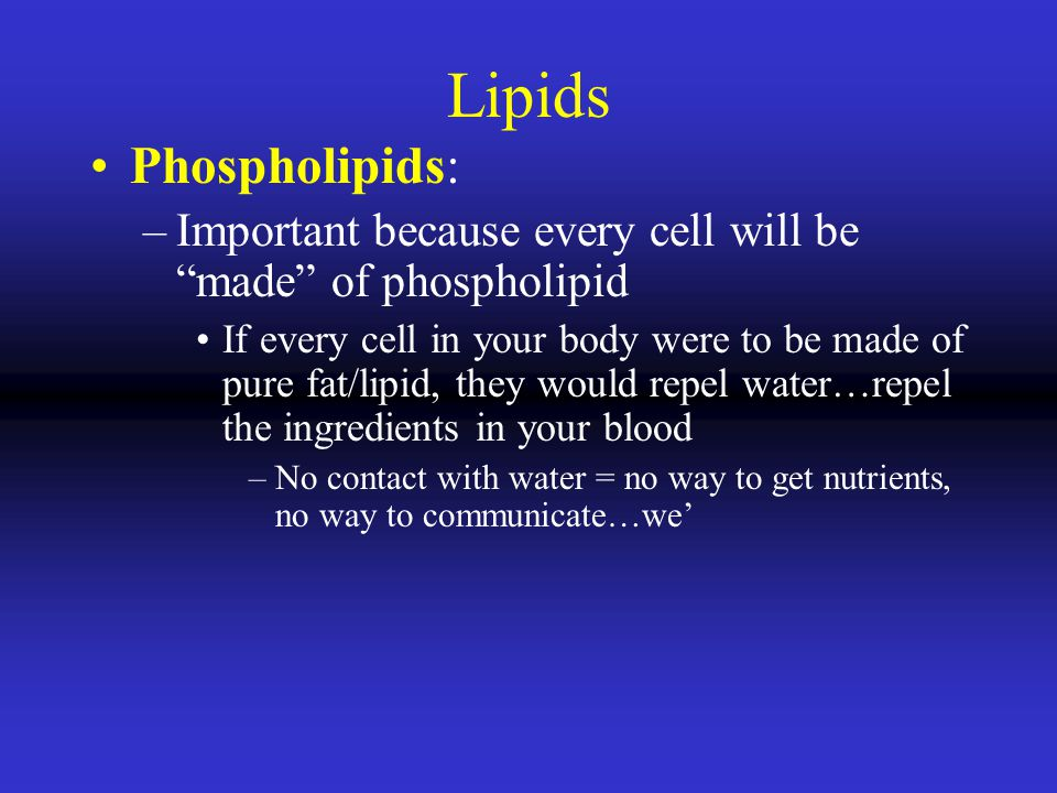 Lipids Phospholipids: –Important because every cell will be made of phospholipid If every cell in your body were to be made of pure fat/lipid, they would repel water…repel the ingredients in your blood –No contact with water = no way to get nutrients, no way to communicate…we