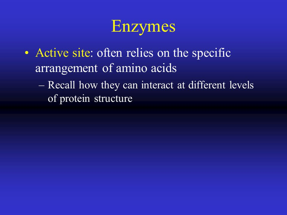Enzymes Active site: often relies on the specific arrangement of amino acids –Recall how they can interact at different levels of protein structure