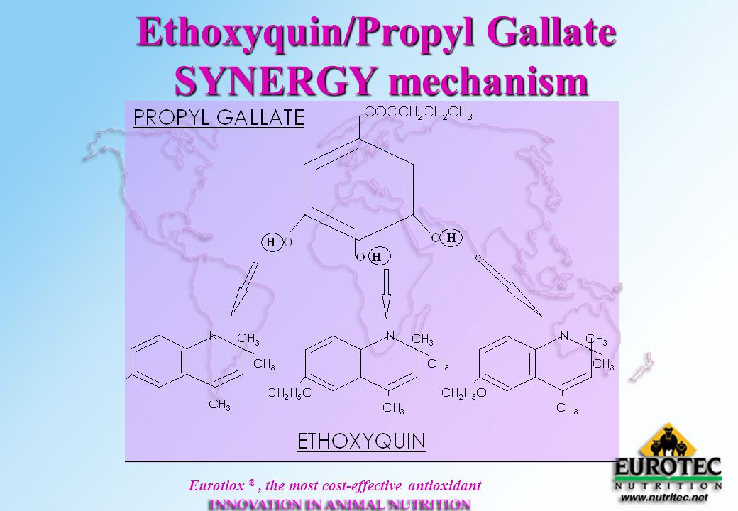 Eurotiox ®, the most cost-effective antioxidant Ethoxyquin/Propyl Gallate SYNERGY mechanism